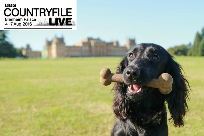 Guru at Countryfile Live