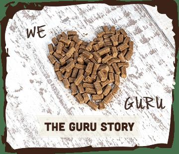 The Guru Story